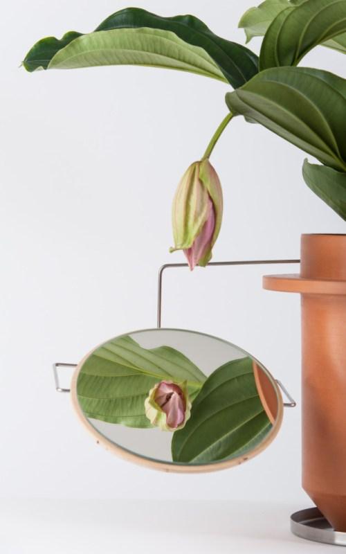 the Phytophiler / Dossofiorito