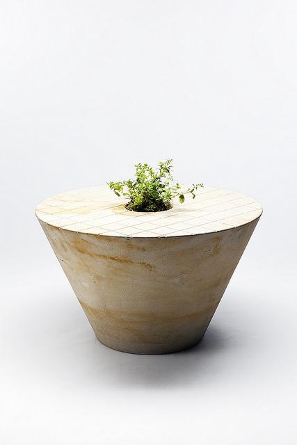 Blueberry table / Klara Sumova