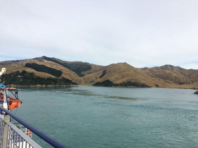 viajar de carro pela nova zelandia to indo viajar 4
