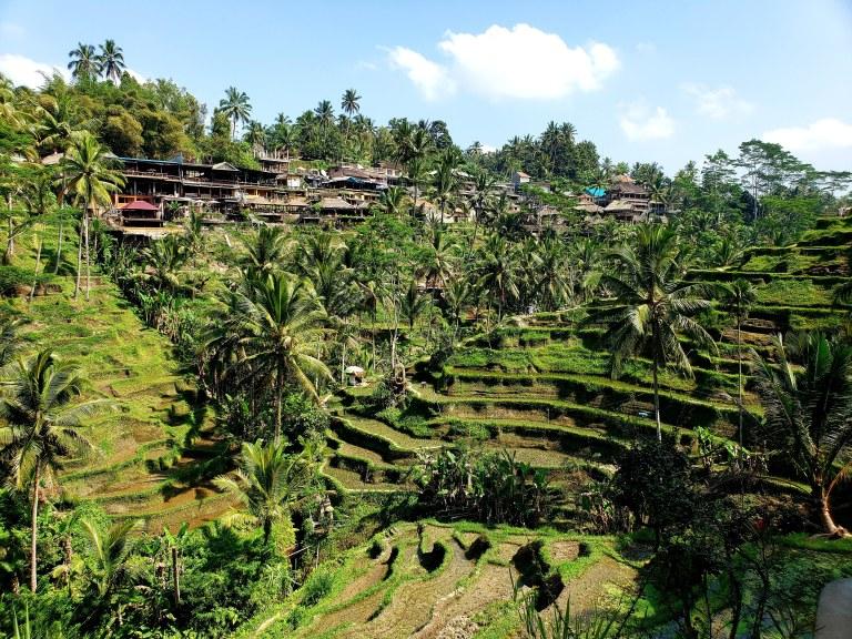 Ubud, Bali, Indonesia – 3 Day Trip