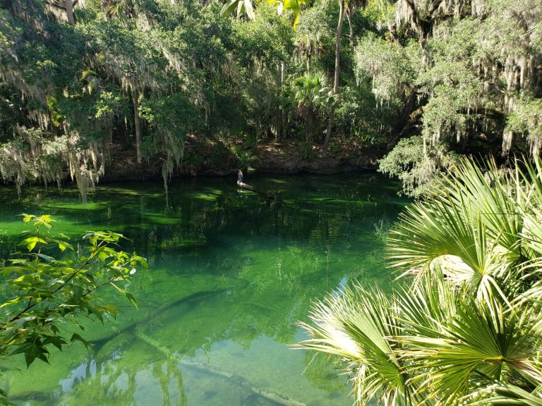 Orlando, Florida, USA – 3 Day Trip