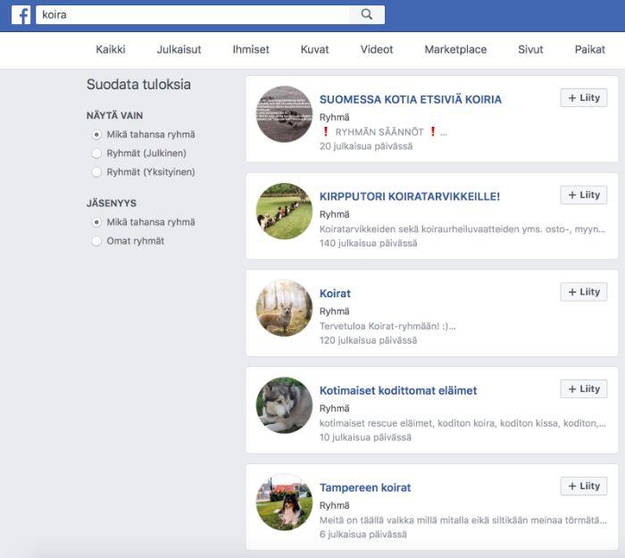Koiraryhmät Facebookissa