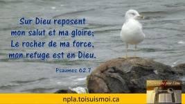 Sur Dieu reposent mon salut et ma gloire ; le rocher de ma force, mon refuge est en Dieu.
