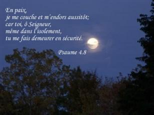 En paix, je me couche et m'endors aussitôt; car toi, ô Seigneur, même dans l'isolement, tu me fais demeurer en sécurité.