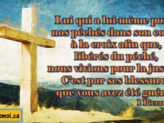 1 Pierre 2.24