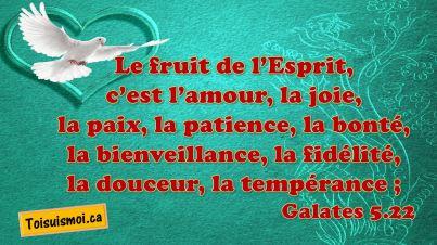 Galates 5.22-23