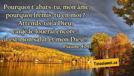 Psaume 42.11