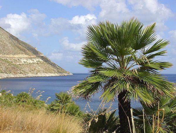 V Taliansku sú dve ďalšie aktívne sopky - Vesuv a Etna.