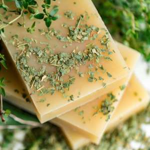 Neem & Tea Tree Zeep en Shampoo Bar
