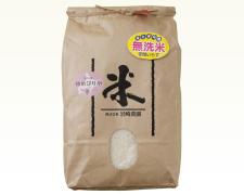 ゆめぴりか10kg無洗米