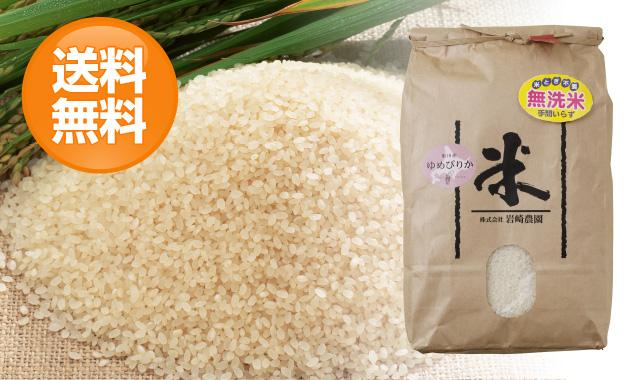 岩崎農園ゆめぴりか【無洗米】10kg