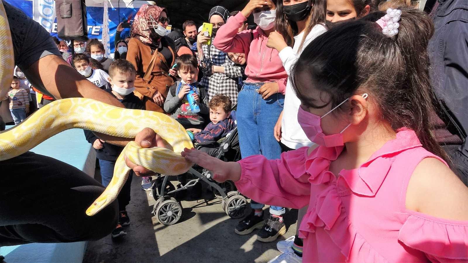 Piton yılanı ile korkularını yenmeye çalıştılar