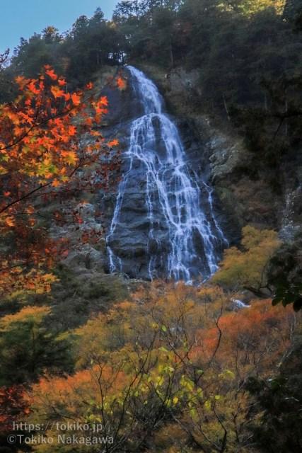 大杉谷・千尋滝