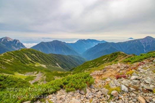 仙丈ヶ岳・稜線から鳳凰三山