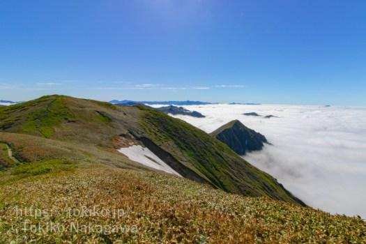 平標山から仙ノ倉山の眺め、雲海と日光方面の山々