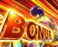 P蒼天の拳 双龍 BONUS