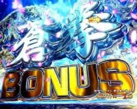 P蒼天の拳 双龍 蒼拳BONUS
