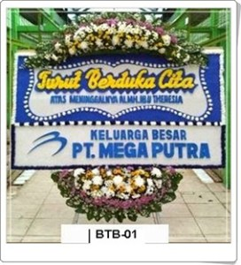 BTC01-1-272x300