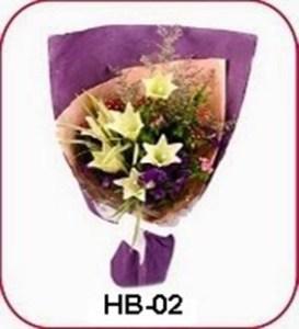 HB02-1