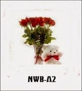 NWB02