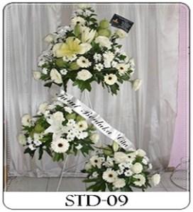 STD-09-1