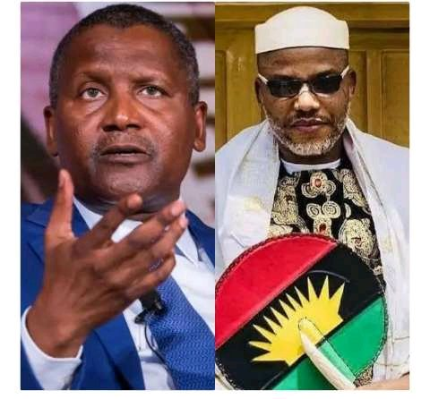 Nnamdi Kanu Sends Strong Message To Dangote, Says He Is Nigeria's Biggest Problem