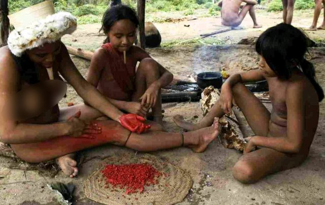 TWISTED POLYGAMY! See The Isolated Zo'é Tribe In Brazil Where Ladies Can Marry Many Husbands 