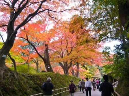 AutumnColorinChusonji1