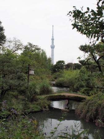 Tokyo Skytree from Mukojima Hyakkaen Garden