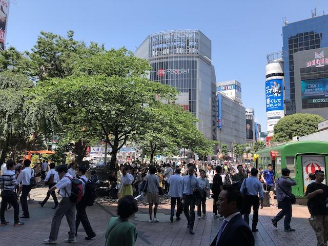 shibuya-hachiko tokyo scramble crossing