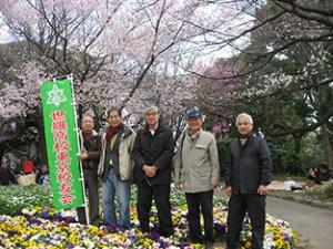 観桜会(飛鳥山公園-H28.3.27-)