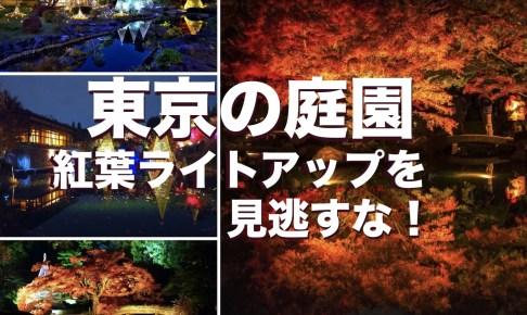 東京の庭園 紅葉ライトアップ