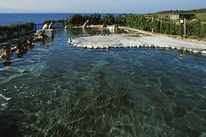 大島温泉 元町浜の湯