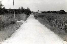 与論島唯一の延長2キロメートルの直線道路です。
