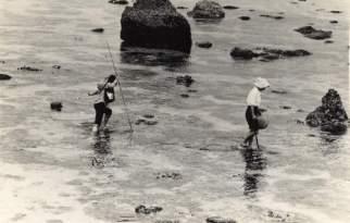 潮が引き始めたサンゴ礁を渡りながらで魚を捕ります。