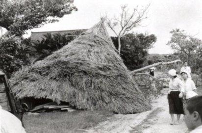 台風で倒壊した茅葺きの屋根の家(茶花)。