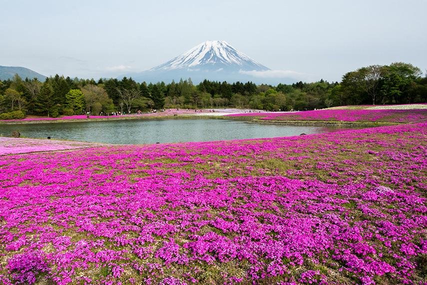 Fuji Hakone Izu Nationaal Park