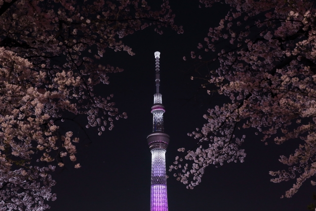 lightedup_sakura_with_tokyoskytree