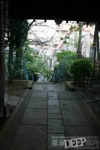 52-310.jpg