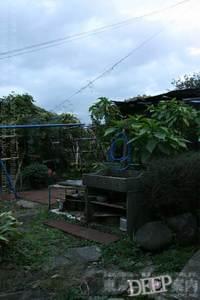 94-131.jpg