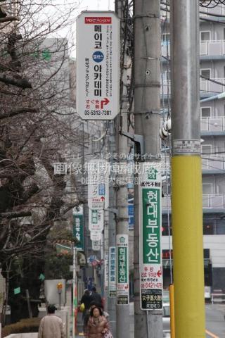 新宿区 若松河田