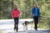nordic-walkers-dog-Westend