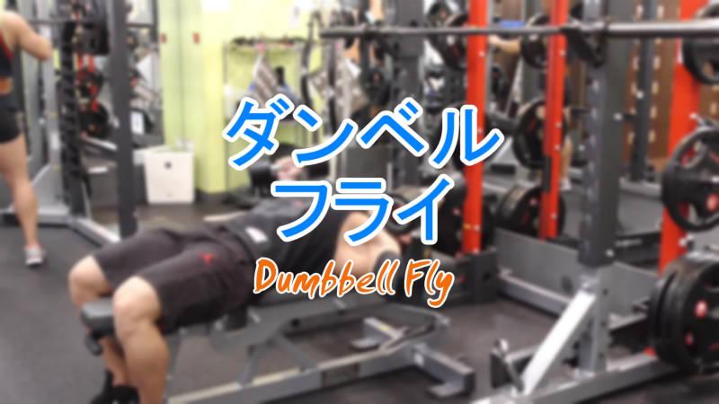 ダンベルフライ(Dumbbell Fly)で広背筋を鍛えるやり方とフォーム