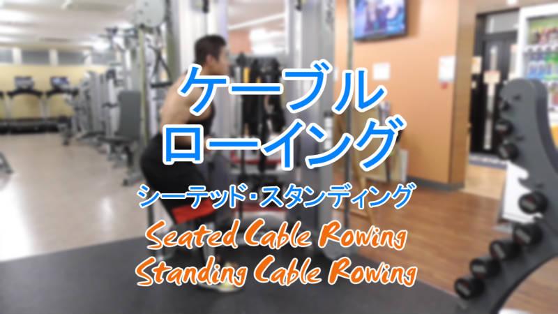 シーテッドケーブルローイング(Seated Cable Rowing)のやり方とフォーム