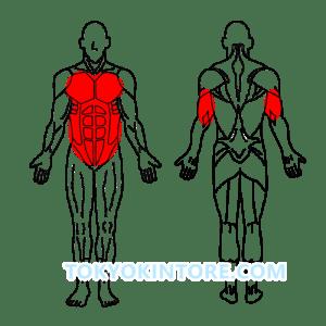 3分割トレーニング胸と腹筋と上腕三頭筋