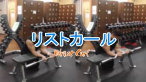 リストカール(Wrist Curl)のやり方とフォーム