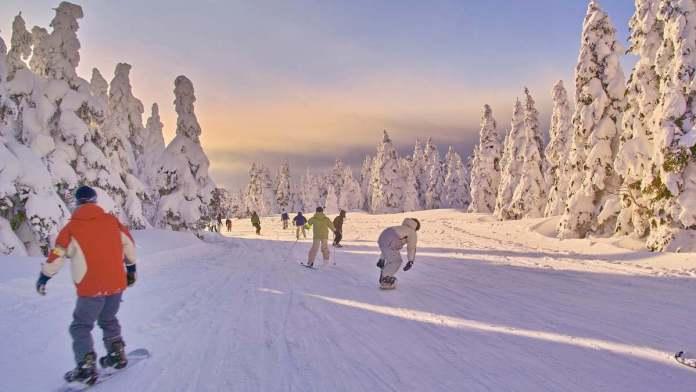 Tokyo Area Ski Resorts, Powder Snow in Niigata
