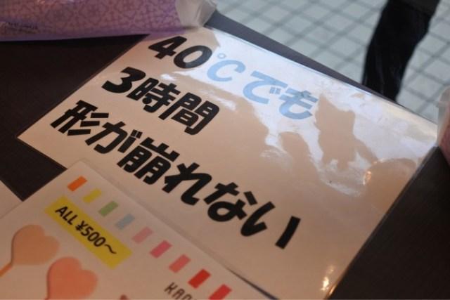 IMG_8990