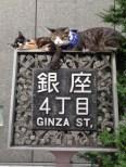 Ginza, Tóquio