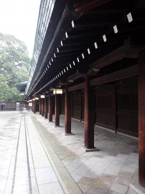 雨の明治神宮